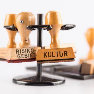 """""""Risikogebiet Kultur!"""" Strategien gegen das ART(en)sterben – Perspektiven für die Zukunft der Kultur (26.11.2020 19:00)"""